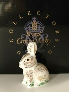 Royal Crown Derby Nibbles Bunny Guild Paperweight Gold Stopper & Box Excellent