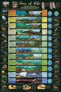 Eras of Life Geological Time Scale Poster, 24 x 36 Inches