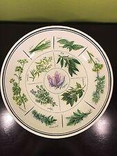 "William Sonoma Italy Herbs Pasta Serving Bowl Plate 13"" Tarragon Thyme Bay Rare"