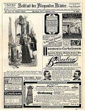 Birresborner Eifel Mineral-Brunnen Tafelwasser A.W.Maurer Kautschuk-Stempel 1893