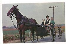 AMISH COURTING BUGGY Horse  Greetings Penna Dutch Country PA Postcard Religious