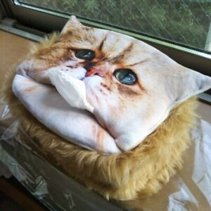 Foochan Cat Kleenex Tissue Box Case Cover & Oil Off Paper Jaoanese Kawaii Cat