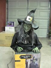 Animated Wicked Witch Prop Life Size Get Up Rising By Gemmy Halloween Decoration