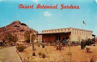 Old Chrome Postcard AZ H029 Desert Botanical Gardens Papago Park Phoenix 1965