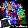 50 LED Solar Lamp Multicolor Flower Blossom LED Fairy String Light Wedding Party