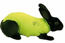 Rabbit Pet Shirt, Medium, Green, Premium Service, Fast Dispatch.