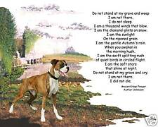 Beloved Pet Memorial Do Not Stand at My Grave and Weep
