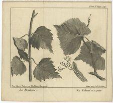 Le Bouleau (..) - Le Bas (1752)