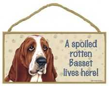 """A Spoiled Basset (Hound) lives here! Cute Dog Sign 5""""x10"""" New Wood Plaque 758"""