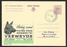 Belgium covers 1968 private Advertising PC DOGS Brussels to Gasperich