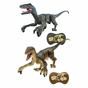 2.4Ghz Remote Control Foot Roaring Velociraptor Dinosaur Toy for