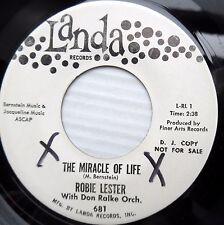 ROBIE LESTER pop promo LANDA 45 MIRACLE OF LIFE / BALLAD OF CHEATING JOHN JR459