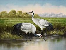 Original oil painting - CRANE BIRDS in MARSHES Christian Petit - 42x32 cm