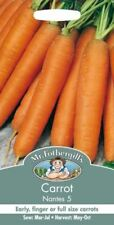 Mr Fothergills - Vegetable - Carrot Nantes 5 - 4000 Seeds - Twin Pack