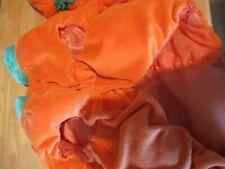 Gently used Medium Pumpkin Costume