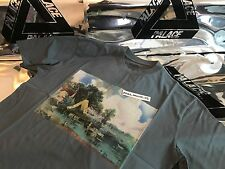PALACE SKATEBOARDS FW16 MEDIUM GREY STUBBLE PICTURE TRI FERG TEE T-SHIRT M LAKE