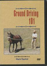 Groundwork Horse Riding 101 horse training Dvd Mark Rashid