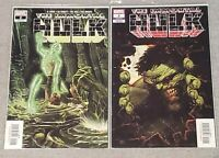 Immortal Hulk #2 - Regular & Zaffino Variant - 1st Dr Frye - MEXICAN EDITIONS