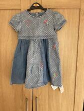 BNWT Girls Dress 2-3