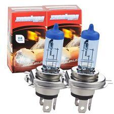 H4 Xenon Look ULTRA Abblendlicht Birnen Lampen Glühlampen White Blue C14 Hammer