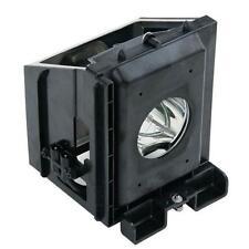 Samsung SP61L6HRX/XAO SP61L3HR SP61L3HRS/XAX SP43J6HD TV Lamp w/Housing