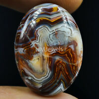 Cts. 24.35 Natural Laguna Lace Agate Cabochon Oval Cab Exclusive Loose Gemstone