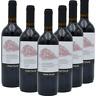 VINO ROSSO Aglianico beneventano IGP x 6 bottiglie 0.75ml