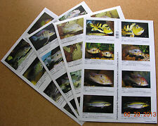Package of ALL Supplements for AQUALOG S.A. Cichlids 1 (Peel Back Stickers)