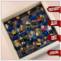 Display Frame  case for Lego Harry Potter Fantastic Beasts Minifigures 71022
