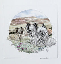 """SKYE TERRIER DOG FINE ART LIMITED EDITION PRINT - """"Skyes on the Island"""""""