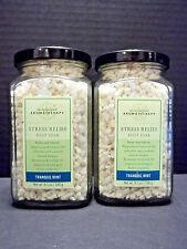 Bath Body Works Aromatherapy Tranquil Mint Foot Soak, 8.5 oz., NEW x 2