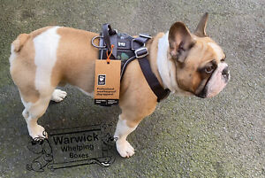 Hurtta Dog Weekend Harness Adjustable Black French Bulldog Breathable 60-80cm