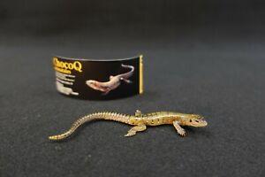 Kaiyodo ChocoQ Animatales Series 10 Viviparous lizard
