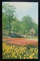 Vintage Postcard~ Sterling Forest Garden~ Sterling Forest, New York~ P485