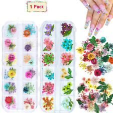 12 Colors Real Dried Flowers 3D Nail Art Decor Diy Tips Manicure Random Color Us