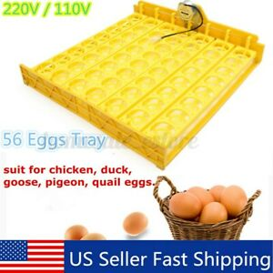 56 Eggs Automatic Egg Incubator Turner Tray Poutry Chicken with 110V Motor [ JJ