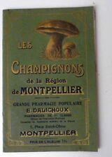 Mycologie LES CHAMPIGNONS DE LA REGION DE MONTPELLIER  Début XX°