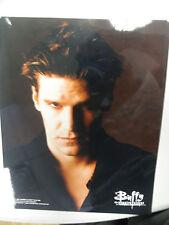 Buffy Tvs 8x10 1998 Licenced Color Photo Angel David Boreanaz!