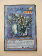 Yu-Gi-Oh Paladin Of White Dragon SKE-024 Light Card (011-76)