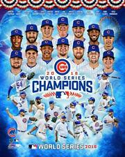 Chicago Cubs 2016 World Series Champions *LICENSED* 8x10 Photo