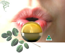 Lip Balm with Natural Moringa Oil