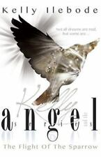 Kelly and the Angel: Flight of the Sparrow by Kelly Ilebode (2014, Paperback)