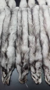 Real fox pelt, polar fox pelt, fox pelt, fox fur, fox skin, fox pelts, fox hide,