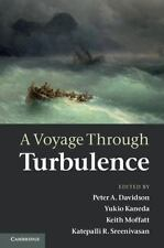 A Voyage Through Turbulence (2011, Hardcover)