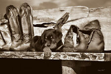 DOG ART PRINT - Big Foot by Barry Hart 16x24 Cowboy Boots Western Photo Poster