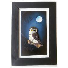 Australian Made Frame Hand painted W Native Bird 3D Night Owl Wall Art Hanging
