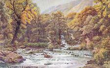 Devon Printed Collectable Artist Signed Postcards