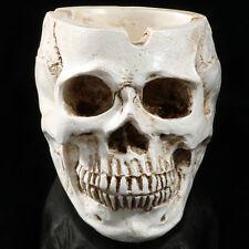 Ashtray Skeleton Human Head Skull Fossil Resin Model Cigarette Holder Smoke Toys