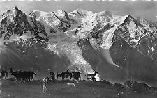 BR17573 le masif du Mont Blanca vu de plan Praz chevre goat  france