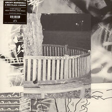 Archy Marshall (King Krule) - A New Place 2 Dr (Vinyl LP - 2016 - US - Original)
